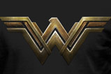 01-Camiseta-logo-Wonder-Woman.jpg