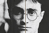 01-Poster-indeseable-Harry-Potter.jpg